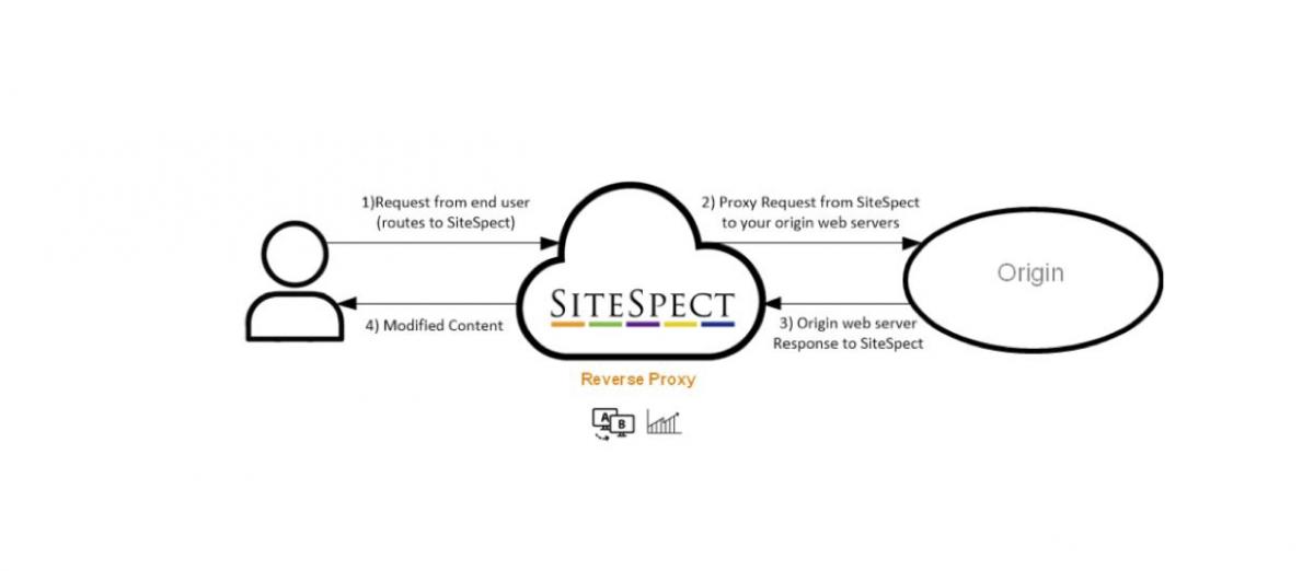 graphic representing sitespect's reverse proxy