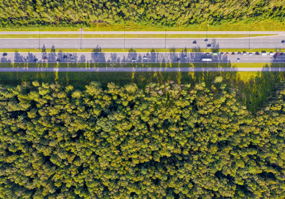 Straight highway with traffic through deep forest aerial top view. Bright summer image at sunny day